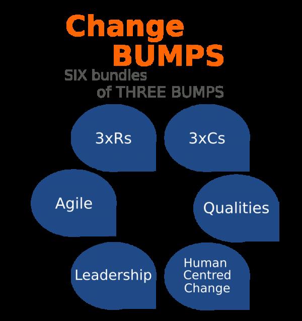 Change Bumps product image